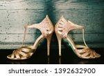 indian bridal reception glitter ... | Shutterstock . vector #1392632900