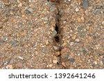 close up of soil erosion soil... | Shutterstock . vector #1392641246