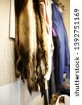 atelier fur products. animal...   Shutterstock . vector #1392751169
