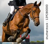 Stock photo horse at jumping competition 139280000