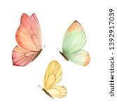 Watercolor Colorful Butterflie...