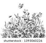 Hand Drawn Wildflowers  Flying...