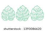 monstera leaf set in simple... | Shutterstock .eps vector #1393086620