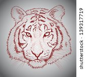 vector sketched tiger face | Shutterstock .eps vector #139317719