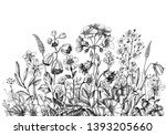 hand drawn wildflowers isolated ... | Shutterstock . vector #1393205660