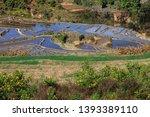 honghe yuanyang  samaba rice... | Shutterstock . vector #1393389110