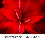 red lily flower. abstract... | Shutterstock . vector #139363208