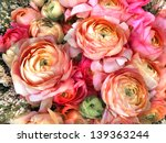 bouquet of pink peony. floral... | Shutterstock . vector #139363244
