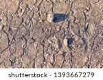old stony  cracked  waethered... | Shutterstock . vector #1393667279