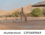 al ain  united arab emirates  ... | Shutterstock . vector #1393689869