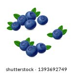 blueberries with leaves... | Shutterstock .eps vector #1393692749