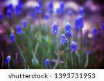 glade with beautiful blue...   Shutterstock . vector #1393731953