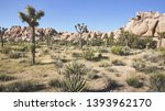 color toned panoramic picture... | Shutterstock . vector #1393962170