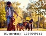 Stock photo walking dogs happy man dog walker enjoying with dogs 1394049863