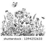 hand drawn wild flowers  flying ...   Shutterstock . vector #1394252633