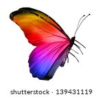 Stock photo color butterfly isolated on white 139431119