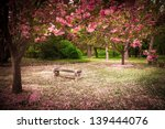 Tranquil Garden Bench...