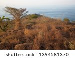 panoramic view from coastal... | Shutterstock . vector #1394581370