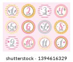 monthly baby stickers for...   Shutterstock .eps vector #1394616329