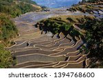 honghe yuanyang  samaba rice... | Shutterstock . vector #1394768600