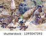 crossing kenya. national park.... | Shutterstock . vector #1395047393