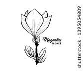 magnolia flower in blossom ... | Shutterstock .eps vector #1395054809