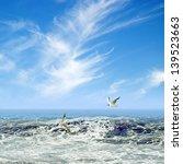 two seagulls   Shutterstock . vector #139523663