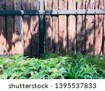 the green garden at home on... | Shutterstock . vector #1395537833