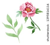 dark red peony floral botanical ... | Shutterstock . vector #1395816116