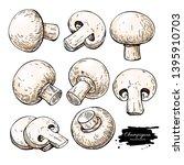 champignon mushroom hand drawn... | Shutterstock .eps vector #1395910703