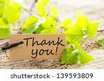 a natural looking label with... | Shutterstock . vector #139593809