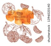 collection of tangerine and... | Shutterstock .eps vector #1396020140