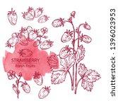 collection of wildstrawberries. ... | Shutterstock .eps vector #1396023953