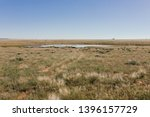Water Dam In The Veld In The...