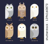 Cute Vector Owl Characters...