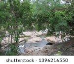 A jungle stream flows through the Chinnar wildlife sanctuary