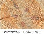 freshly cut tree trunk  closeup ... | Shutterstock . vector #1396232423