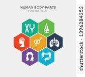 simple set of large intestine ... | Shutterstock .eps vector #1396284353