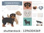designer dogs  crossbreed ... | Shutterstock .eps vector #1396304369