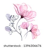 Transparent Floral Set Isolated ...