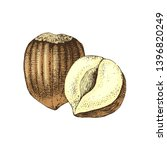 hand drawn colorful hazelnuts... | Shutterstock .eps vector #1396820249