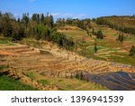 honghe yuanyang  samaba rice... | Shutterstock . vector #1396941539