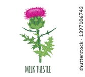 Milk Thistle Flower Icon In...