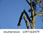 hauts de france france november ... | Shutterstock . vector #1397163479