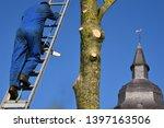 hauts de france france november ... | Shutterstock . vector #1397163506