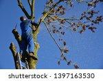 hauts de france france november ... | Shutterstock . vector #1397163530