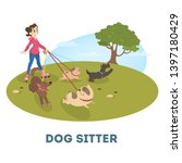 Stock photo female dog sitter walking with cute pets girl on rollerblades walking with group of dogs 1397180429
