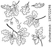 Set Oak Branches With Leaves...