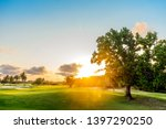 tree on the green hills with... | Shutterstock . vector #1397290250