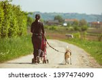 Stock photo mother walking with stroller and dog outdoors in nature on a rural road sunny day in countryside 1397474090